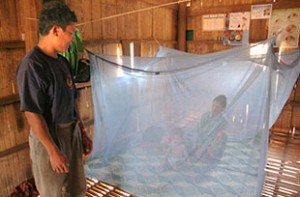 Image source - http://www.who.int/sysmedia/images/topics/malaria.jpg