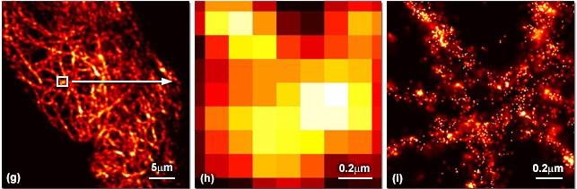 Super-Resolution fluorescence microscopy