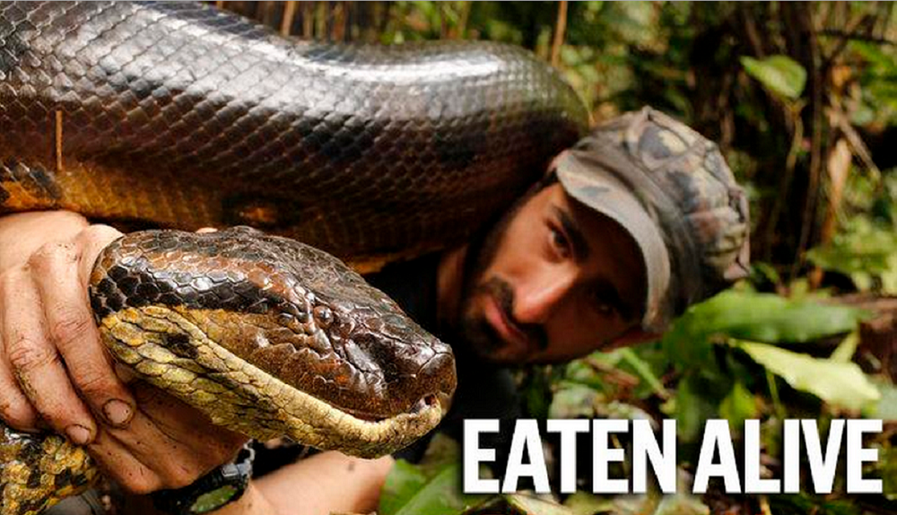 Eaten Alive? Not quite…