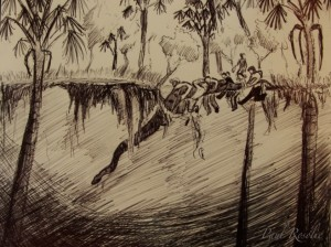 (Taken from Paul Rosalie's field notes on capturing the 22 feet long anaconda for the stunt)