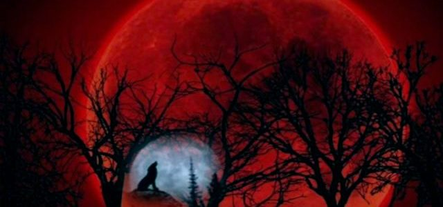 Call out for all the lunar-tics! Gear up for the 'Super blue blood moon'