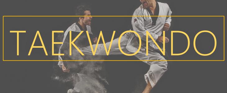 Taekwondo – Kicks and Punches Galore