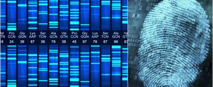 DNA fingerprint: the silent witness of a crime
