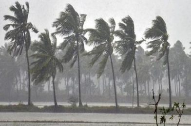 """""""Amphan"""" and The Tropical Cyclones"""