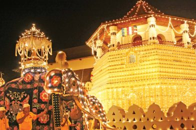 The Chronicle Of A Proud Cultural Patrimony; Kandy Esala Perahera