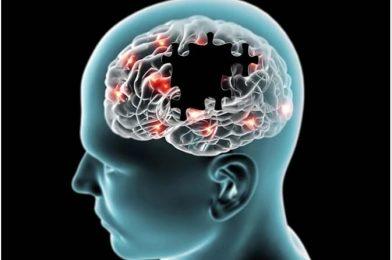 Alzheimer's: The Memory Parasite